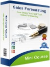 Sales Forecasting Mini course